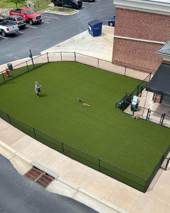 synlawn commercial artificial pet grass